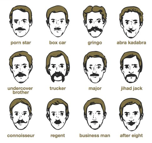 Moustache Chart Movember is Around the Corner!