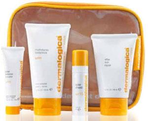 DermalogicaDaylightDefense Dermalogica Daylight Defense Skincare Kit