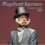 magnificent specimens 150x150 Magnificent Specimens by Dave Mead
