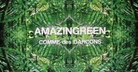amazingreen-post-cdg-01