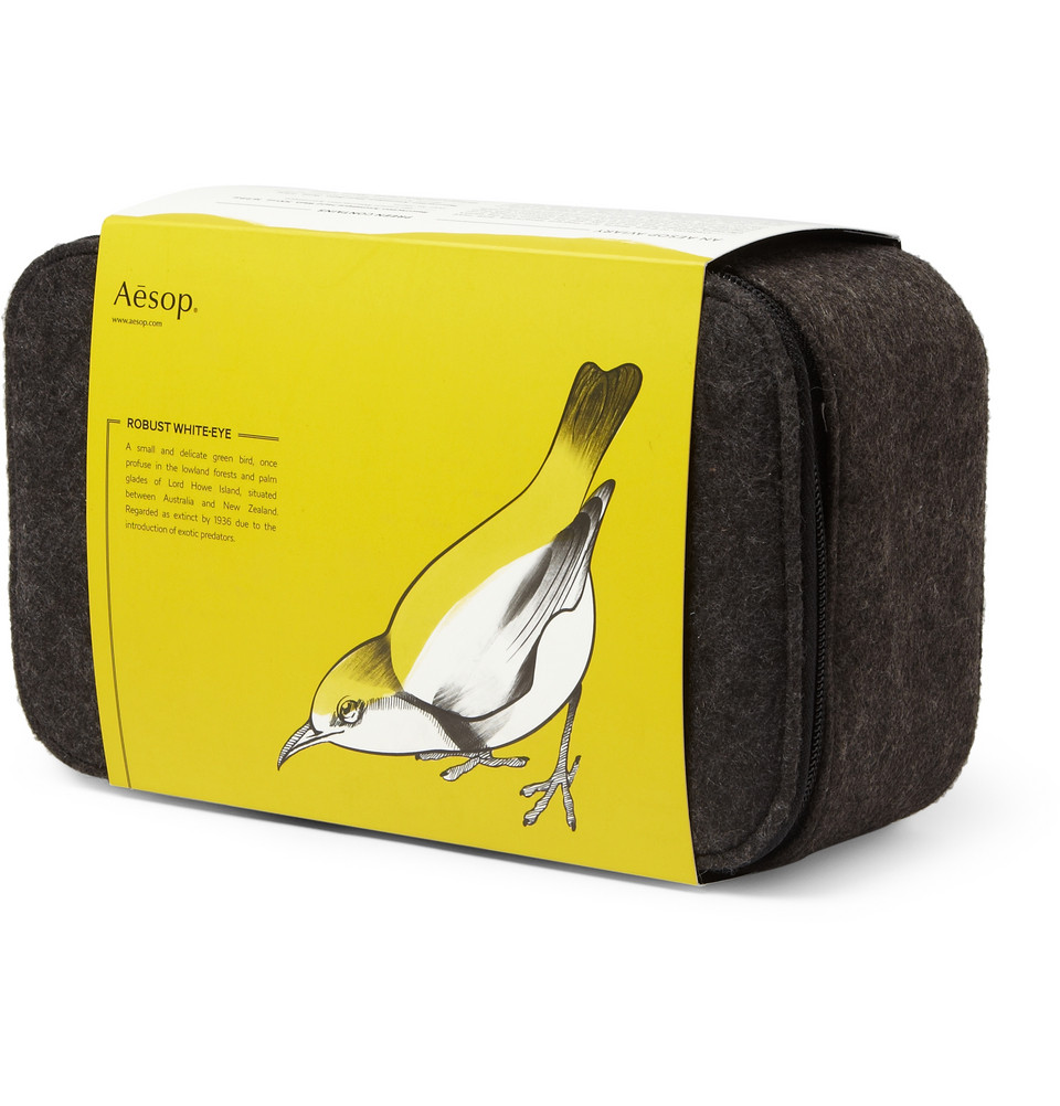 349615 mrp in xl Aesop Preen Grooming Kit
